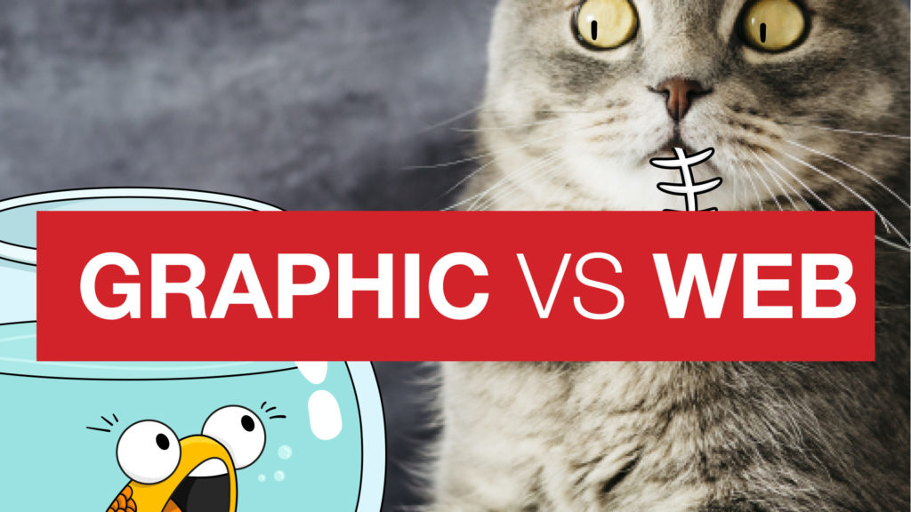 Do I need a Graphic or a Web designer?