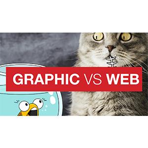 Do I need a Graphic or a Web designer?